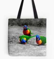 Rainbow Lorikeets  Mum Dad & Junior Tote Bag