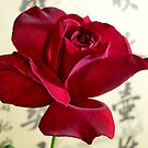 Chinese rose by Basil