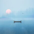 Fog on the lake by JohnDSmith