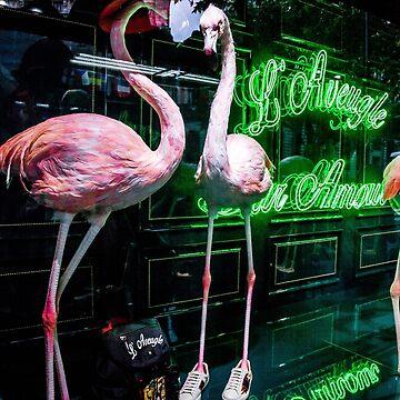Pink Flamingoes by PatrickMHiggins