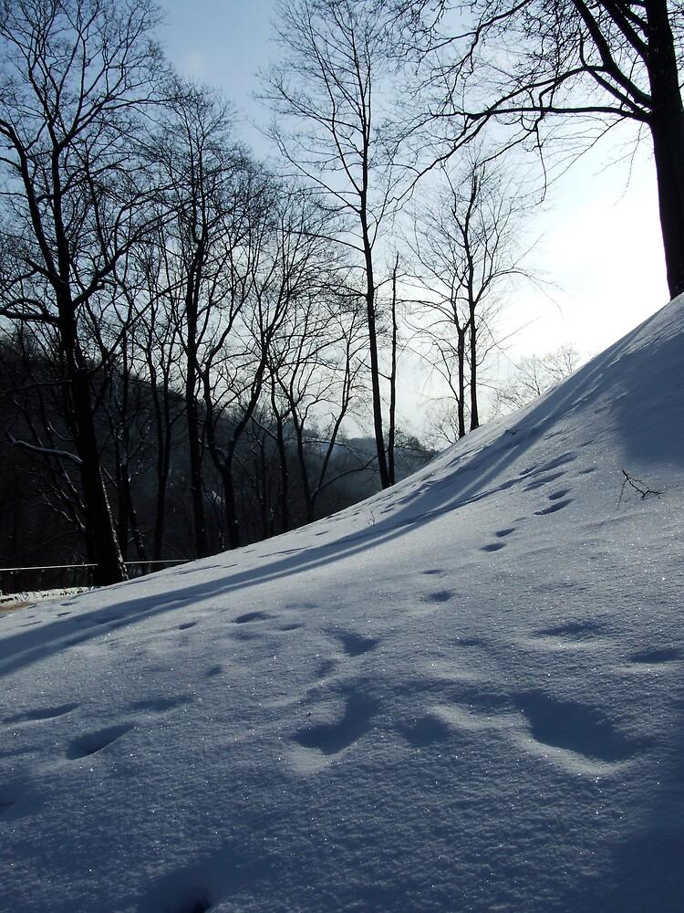 snow by talik