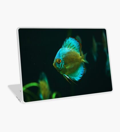 A fish 1 Laptop Skin