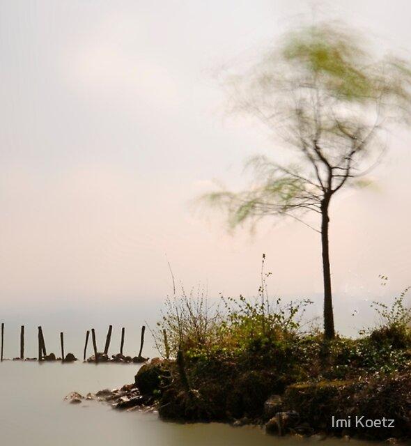 Windy Lac Neuchâtel.....Switzerland by Imi Koetz