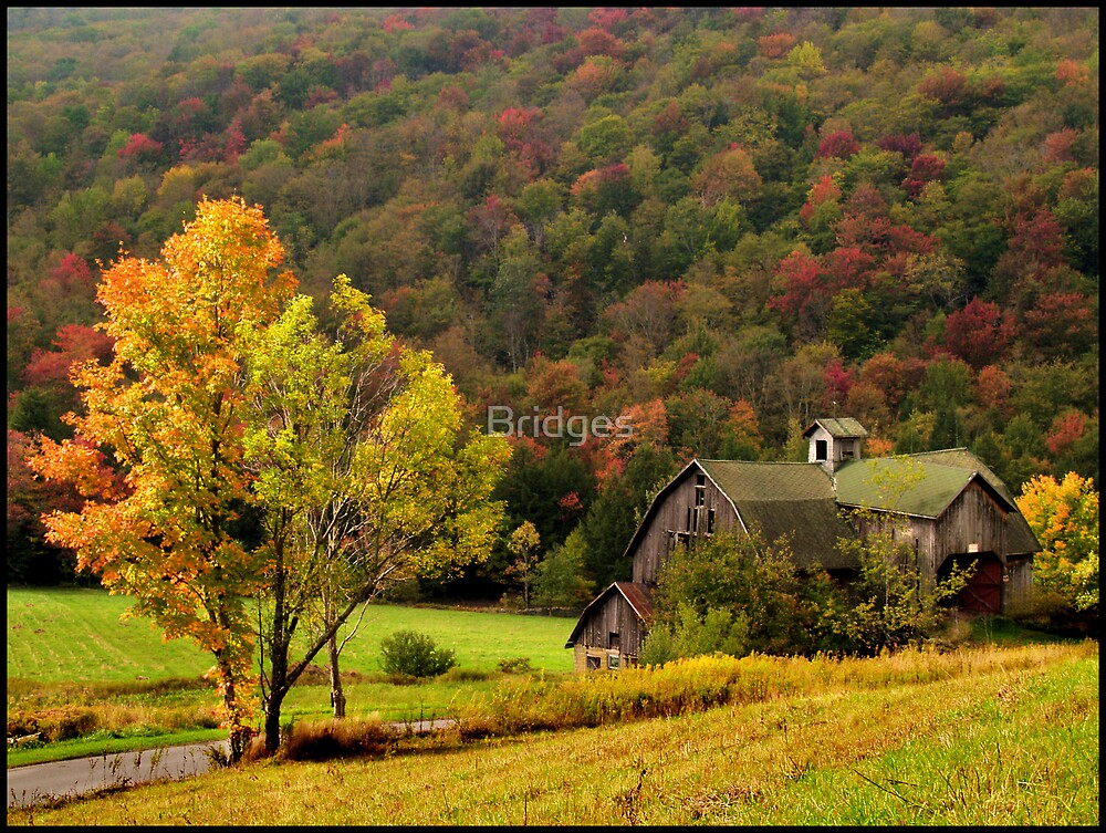 Barn In Early Autum by Bridges