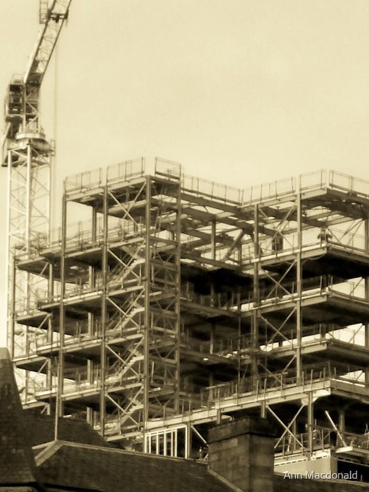 construction by Ann Macdonald