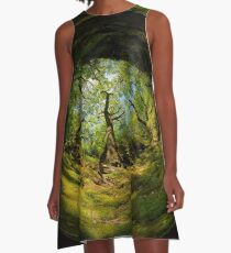 Ness Glen, Mystical Irish Wood A-Line Dress