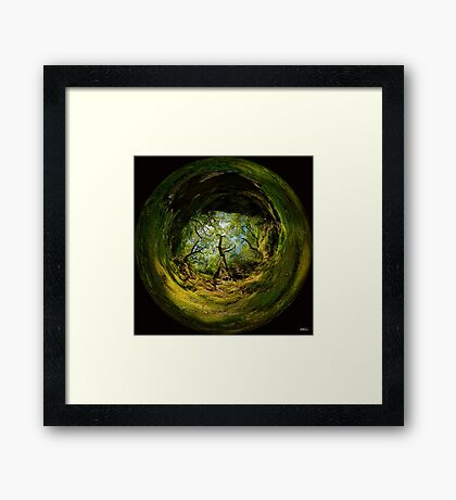 Ness Glen, Mystical Irish Wood Framed Print