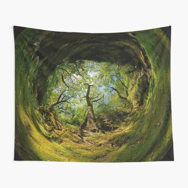 Ness Glen, Mystical Irish Wood Tapestry