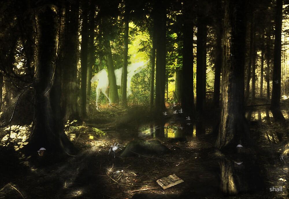 Woodland Wonderland by shall