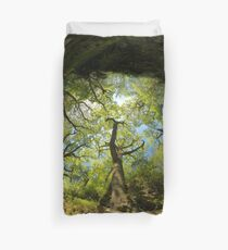 Ness Glen, Mystical Irish Wood Duvet Cover