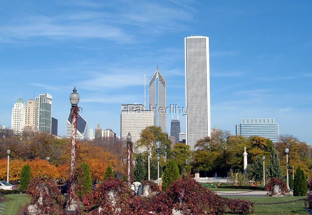 Millenium Park, Chicago by Pat Herlihy