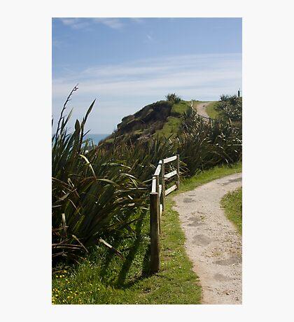 the path 2 Photographic Print
