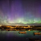 Aurora and the ISS by Roger Porter