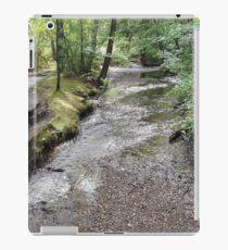 Valley Falls Water Stream iPad Case/Skin