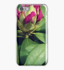 Beautiful Red Rhododendren iPhone Case/Skin