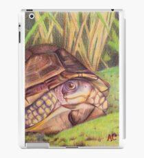 Three Toed Box Turtle iPad Case/Skin