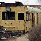 Railroad Cars by Jill Doyle