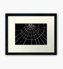 Spiderweb product Design Framed Print