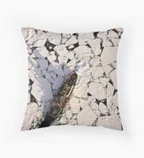 IB Kapitan Khlebnikov in the Ross Sea Throw Pillow