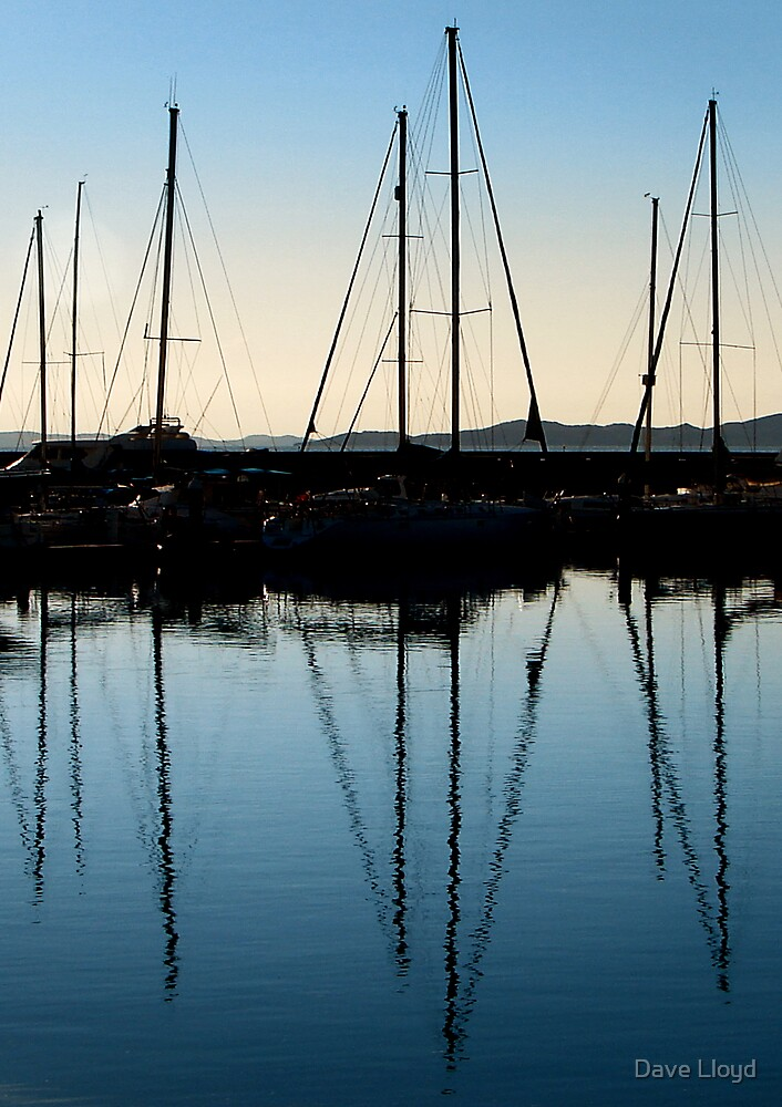 Reflections by Dave Lloyd