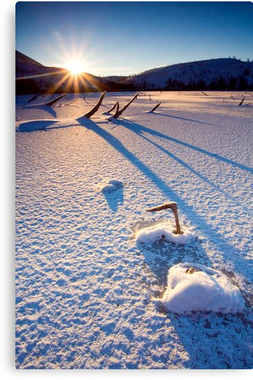 The Long Shadows of Winter by DawsonImages