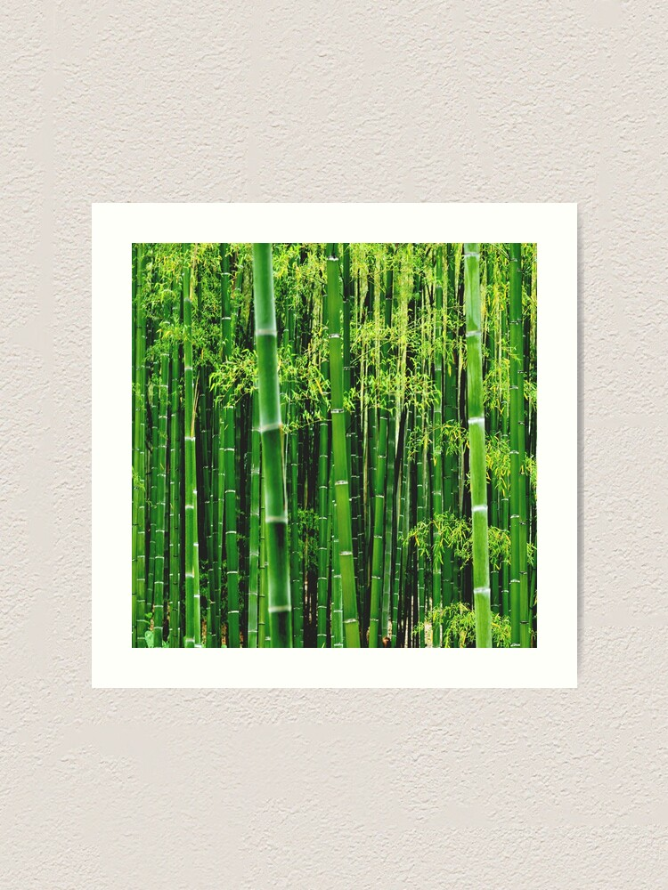 Green Bamboo Tree Art Print By Epril Redbubble
