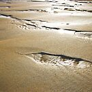 Cornish Sand by Kevin Hart