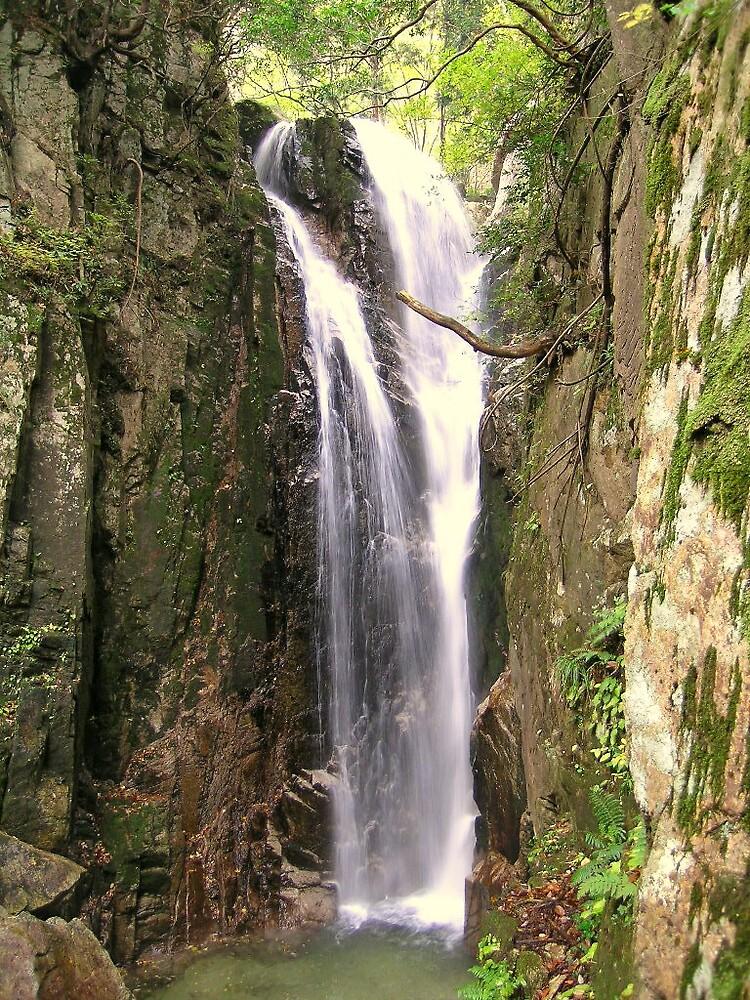 Waterfall by Michon