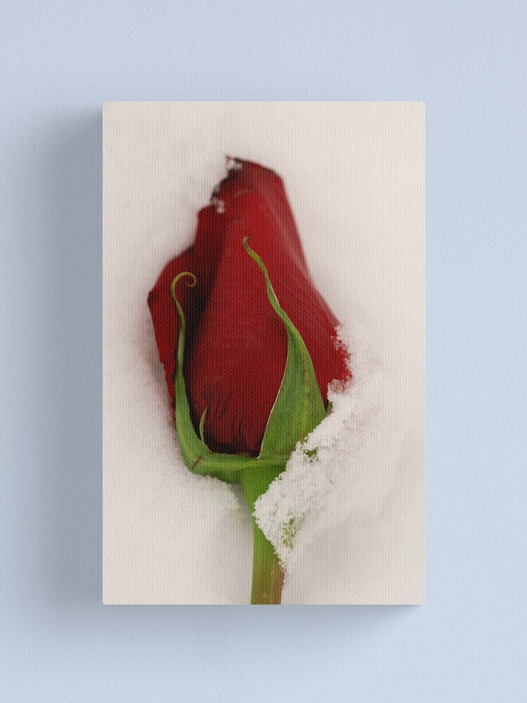 Alternate view of Love on Ice Canvas Print