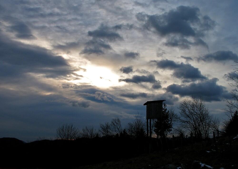 Sunset by Rok Cuder