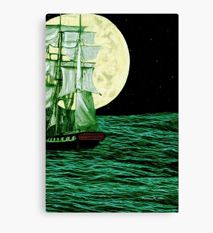 Moonlit Destiny Canvas Print