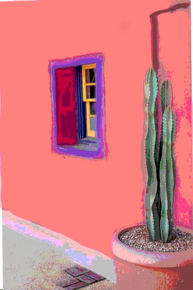 Painted Adobe and Cactus by twohorses