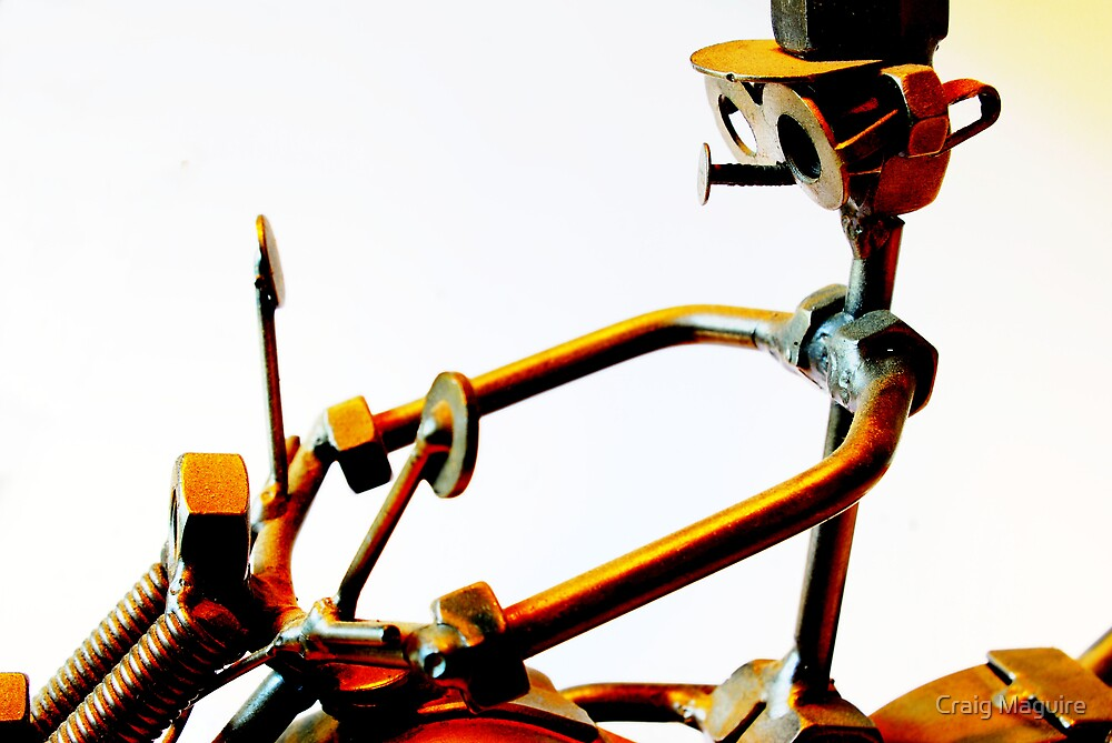 Riding my bike by Craig Maguire