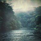 Valley and River by Dirk Wuestenhagen