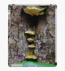 Hobbit House iPad Case/Skin