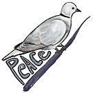 Eurasian Collared-Dove and Peace by SurlyAmy
