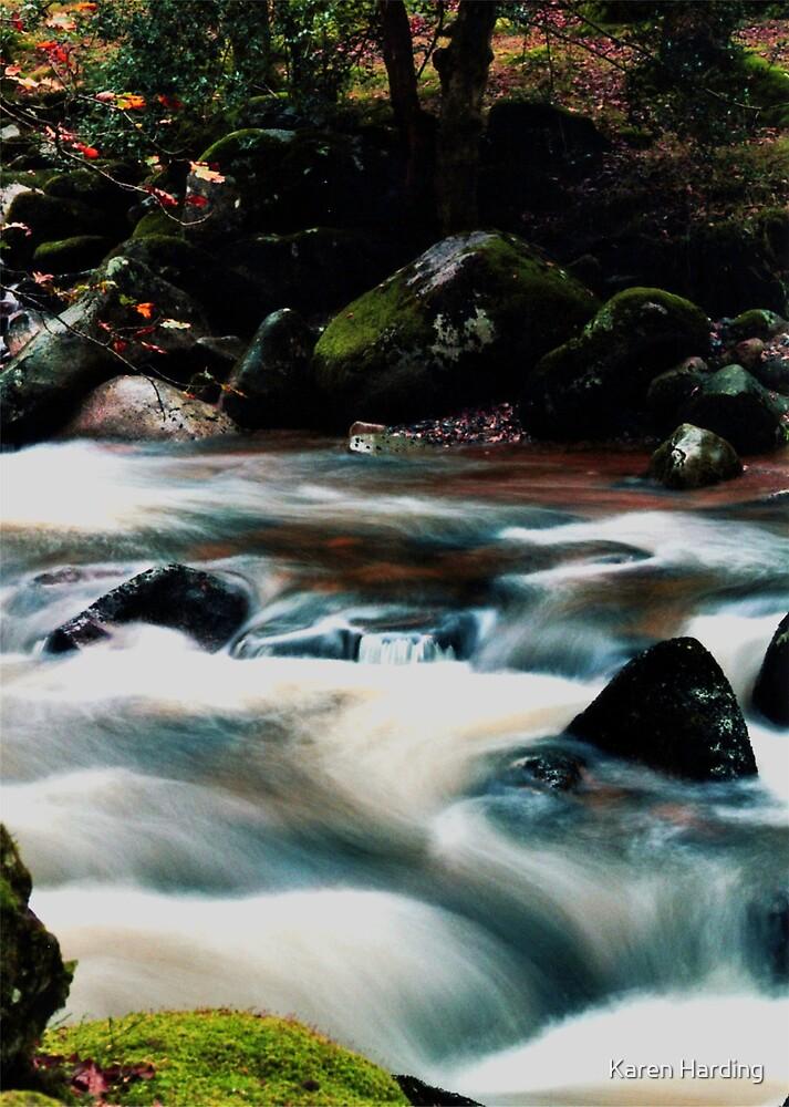 River & Rocks by Karen Harding