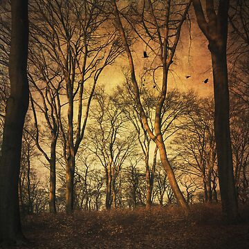 Vintage Forest by DyrkWyst