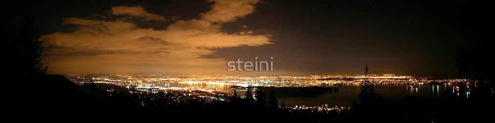 Vancouver at Night by steini