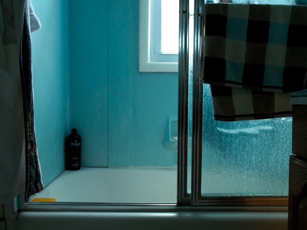 untitled bathroom by Michael Bogdan