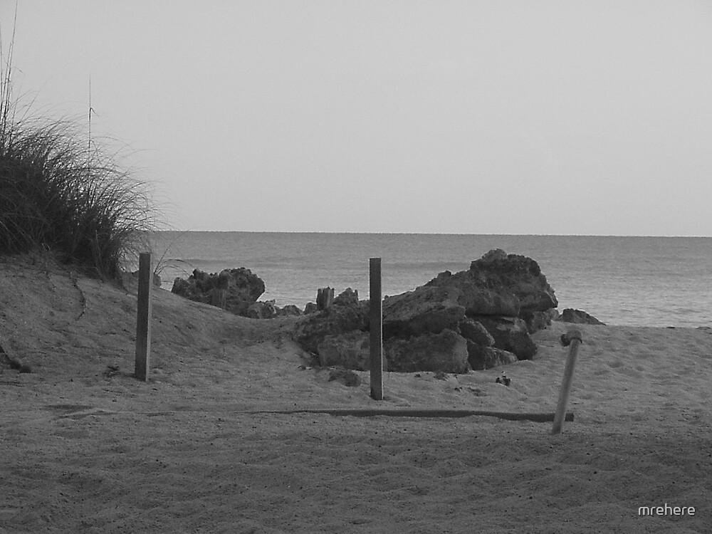 B&W Shore by mrehere