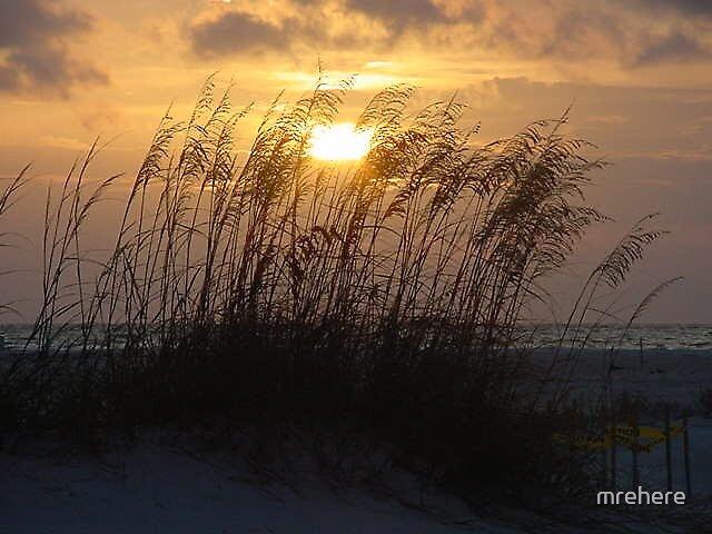 Florida Sunset 5 by mrehere
