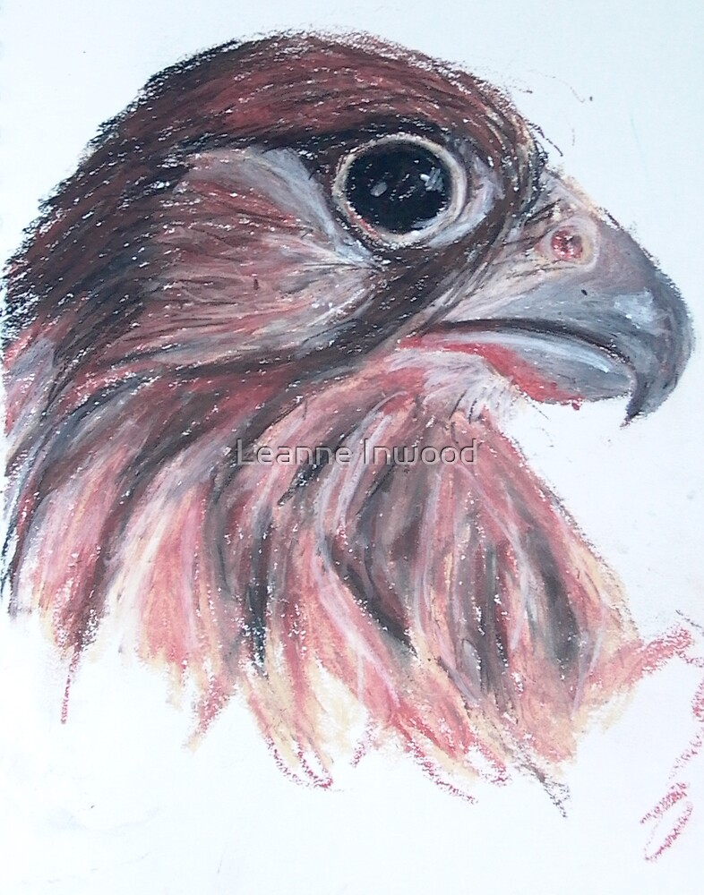eagle by Leanne Inwood