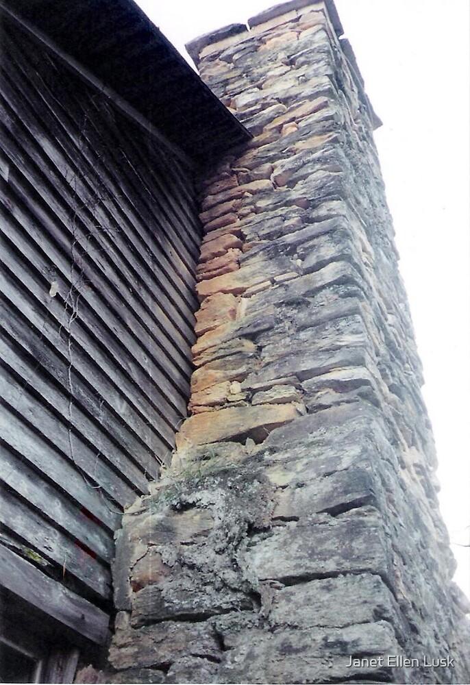 Chimney of Old Homestead by Janet Ellen Lusk