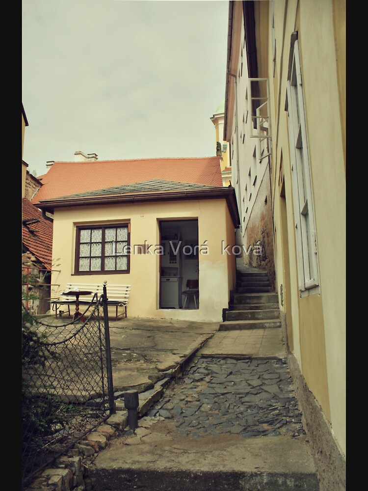 Tiny house and narrow passageway by Trin4ever