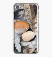 Eggs & feathers iPhone Case/Skin