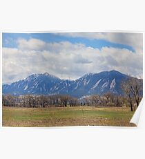 Boulder Colorado Prairie Dog View Poster