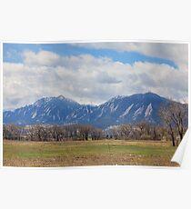 Boulder Colorado Prairie Dog View Poster
