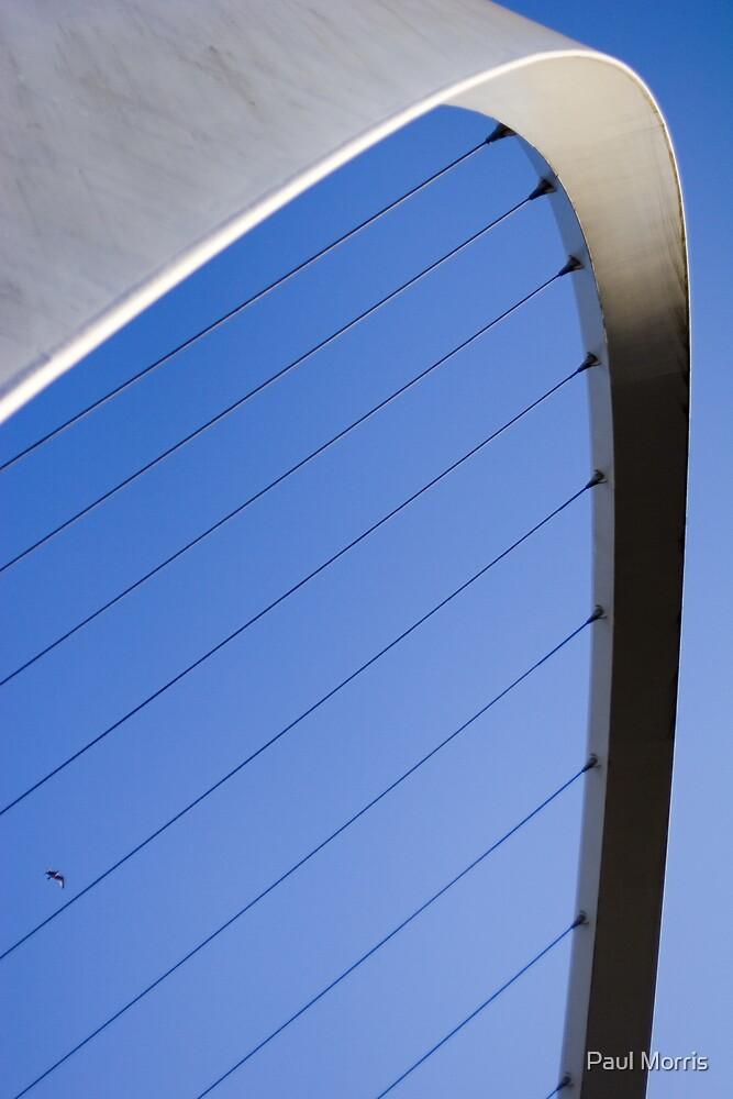 Gateshead Millennium Bridge -close up by Paul Morris