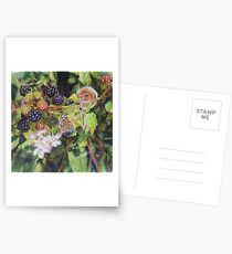 Dormouse / Hazel-mouse with Speckled wood butterfly Postcards